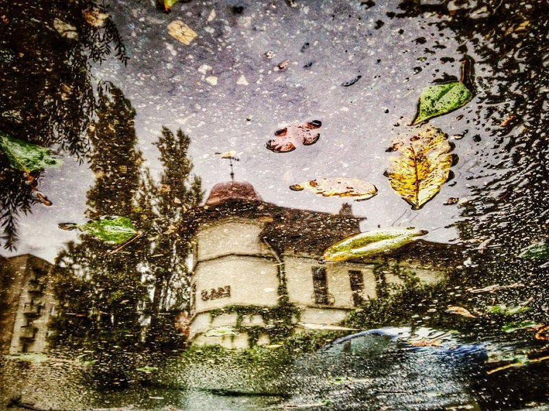 Foto_Ana Maresescu1